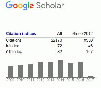 Google scholar essay writing